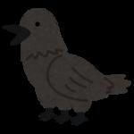 fantasy_bird_yatagarasu.png